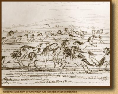 <h3>Los días pasan como caballos salvajes sobre las colinas</h3>